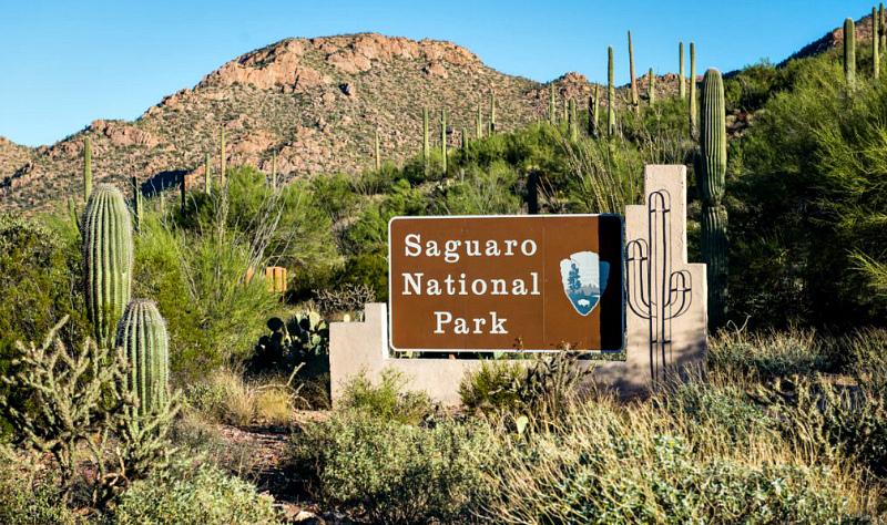 2015_11_06_New-Mexico-Arizona-Utah-Nevada-Trip-Full-JPEG-Export-72dpi-3000px-sRGB_2015_11_06_New-Mexico-Arizona-Utah-Nevada-Trip_DSC_6994-1024x684.jpg